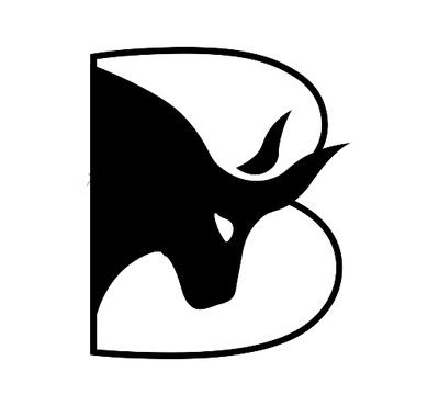 Bulleon (BUL) ICO Details, Rating and Overview
