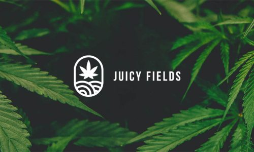 Cannabis Crowd growing Platform