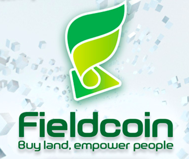 Current Food Shortage Impact & Fielcoin's Approach